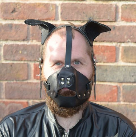 Puppy Pet-Play Head Harness (Pliable Ear Design)